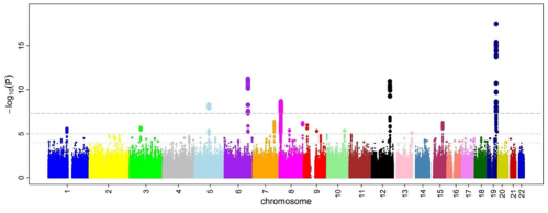 GWAS results are traditionally presented with a Manhattan plot (due to its resemblance of the city's skyline) where the genetic variants corresponding to the dots above the top grey line (representing P values less than 5e-7 i.e. 0.0000005) are usually followed up with additional studies to validate their plausibility. Image taken from Wikipedia (click on image to access source)